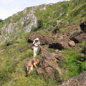 Entre Lerzolithe et calcaire